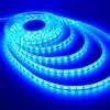 LED juosta 14,4W/m - Mėlyna - IP20