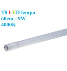 T8 LED lempa 60cm - 9W