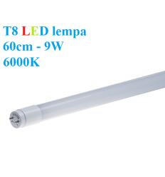 T8 LED lempa 60cm - 9W - 6000K