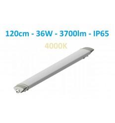 120cm - Hermetinis LED šviestuvas 36W - 3700lm